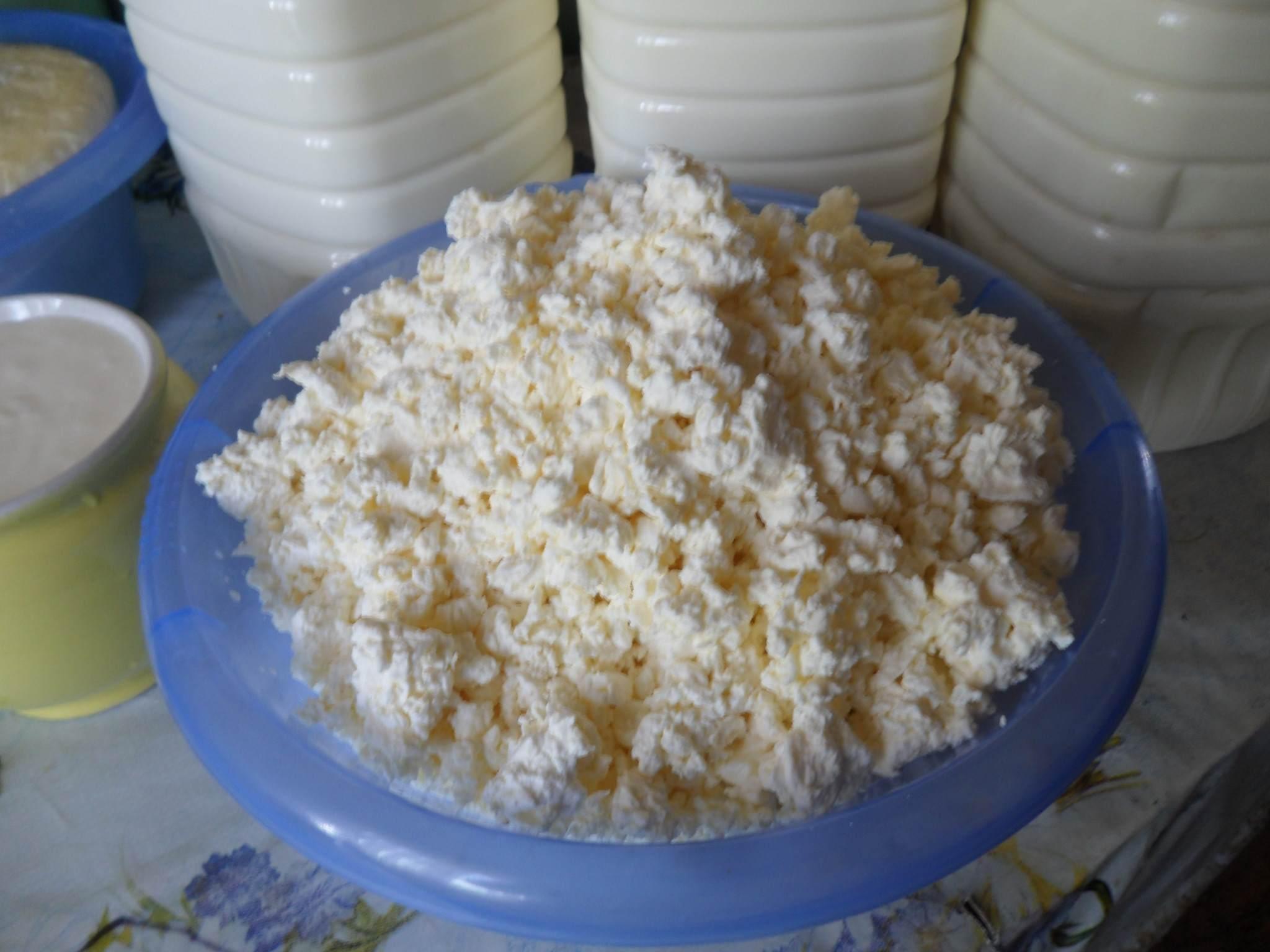 Домашние творог из коровьего молока в домашних условиях