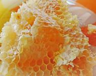 Бортевой мед в сотах
